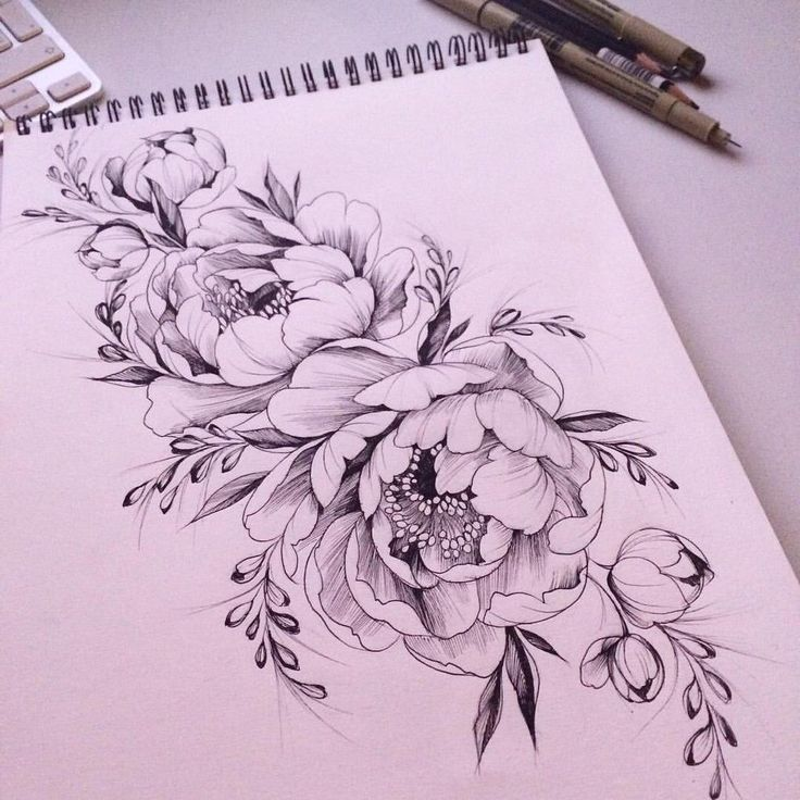 736x736 Peony Tattoo Drawing