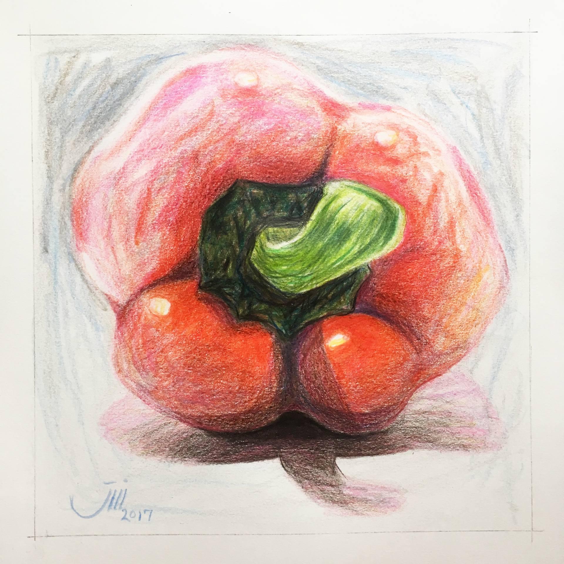 1920x1920 Saatchi Art My Sketchbook, A Red Bell Pepper Drawing By Sedigheh