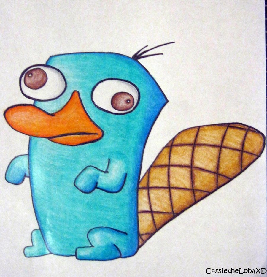 900x933 Perry The Platypus Drawing Perry The Platypus By Cassiethelobaxd