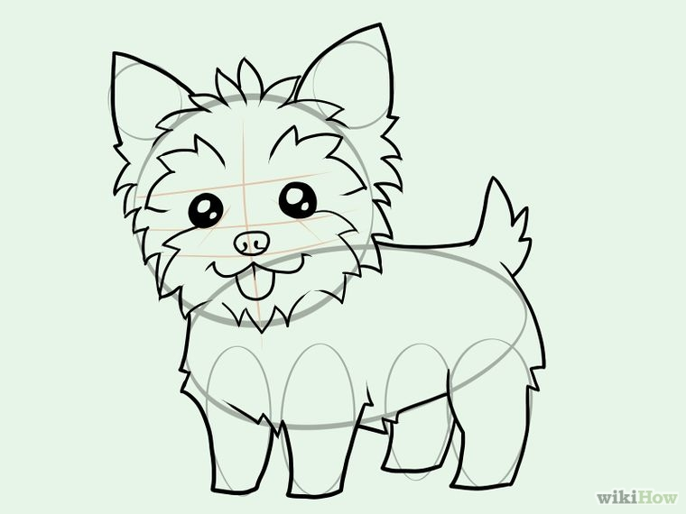 760x570 Draw A Yorkie Yorkies, Drawings And Dog