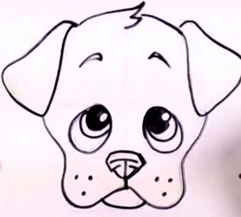 805x725 Drawing Cartoon Puppy Easy To Draw Together With Pet Drawings