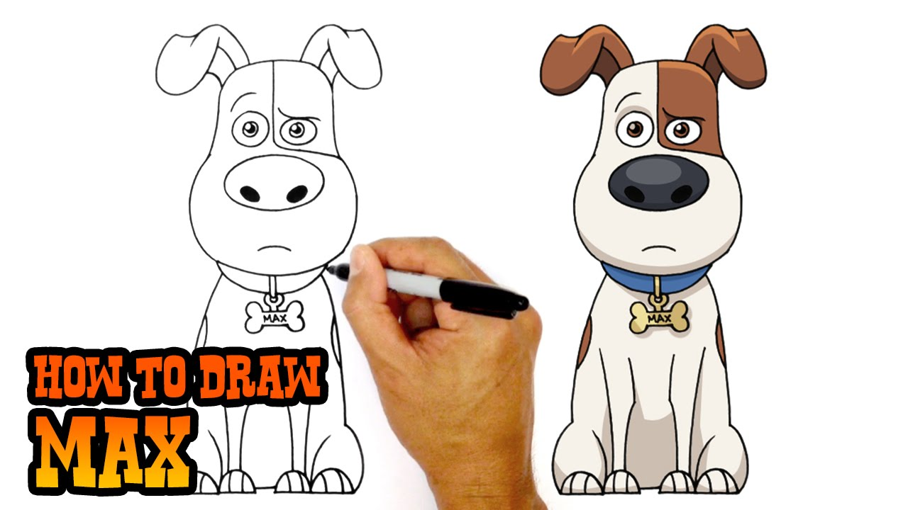 1280x720 How To Draw Max Secret Life Of Pets