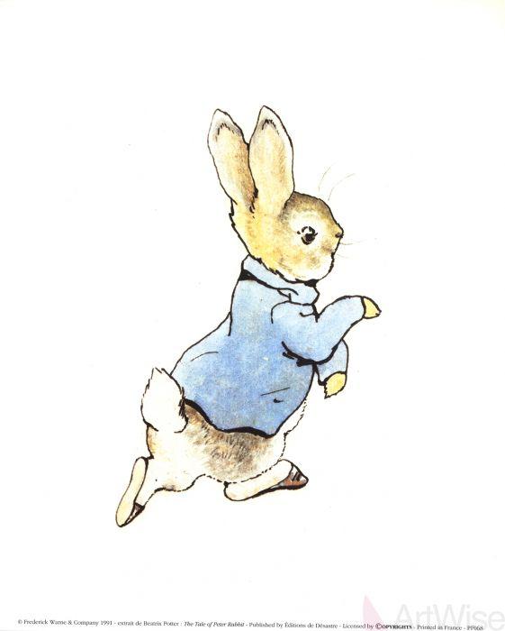 561x700 Beatrix Potter The Tale Of Peter Rabbit