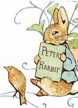 161x222 Peter Rabbit Drawings Peter Rabbit Peter Rabbit