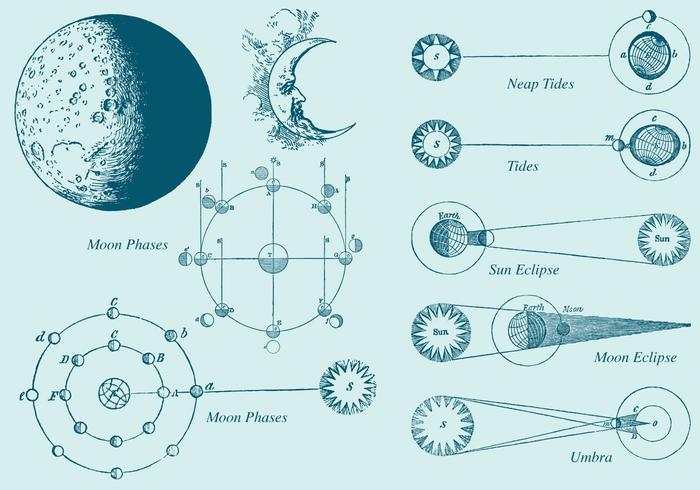 700x490 Old Style Drawing Moon Phase Vectors