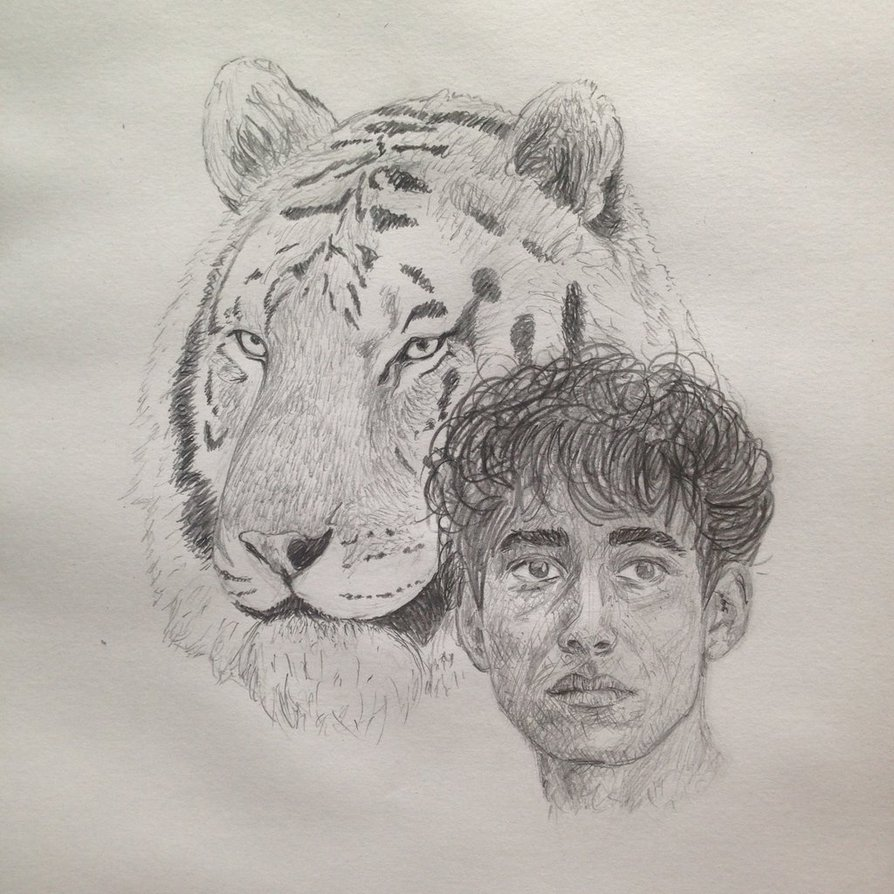 894x894 Life Of Pi Drawing By Livingislearning