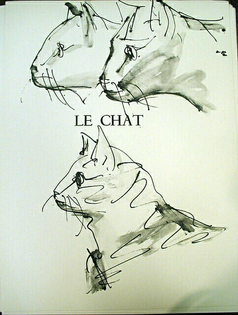 484x640 Pablo Picasso, Art Picasso, Cat And Drawings