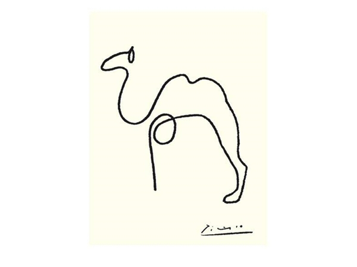 1200x900 Picasso Line Drawings All The Night Cats The Camel (Ltbgtline