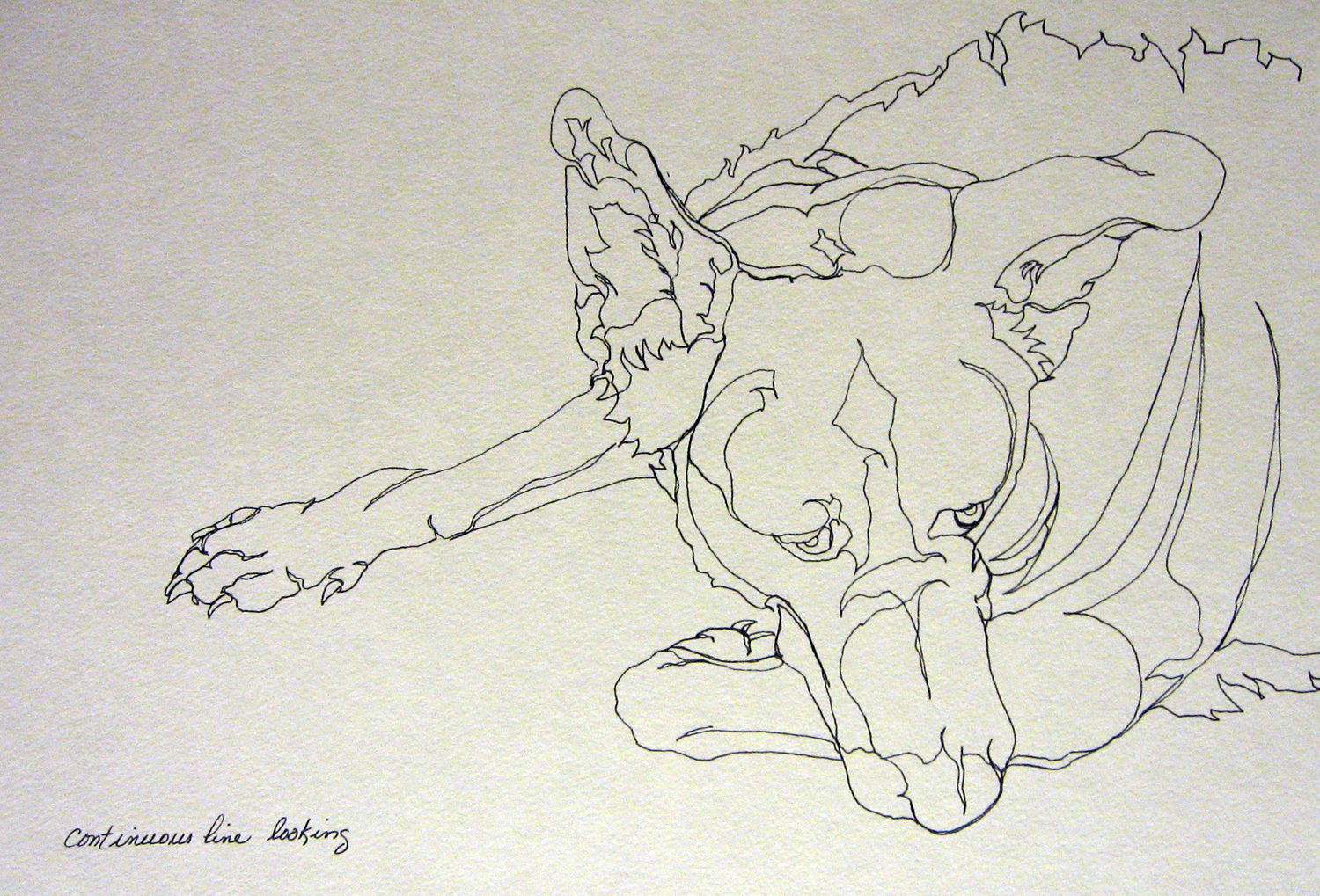 Continuous Line Drawing Famous Artists : Picasso contour drawing at getdrawings free for personal use