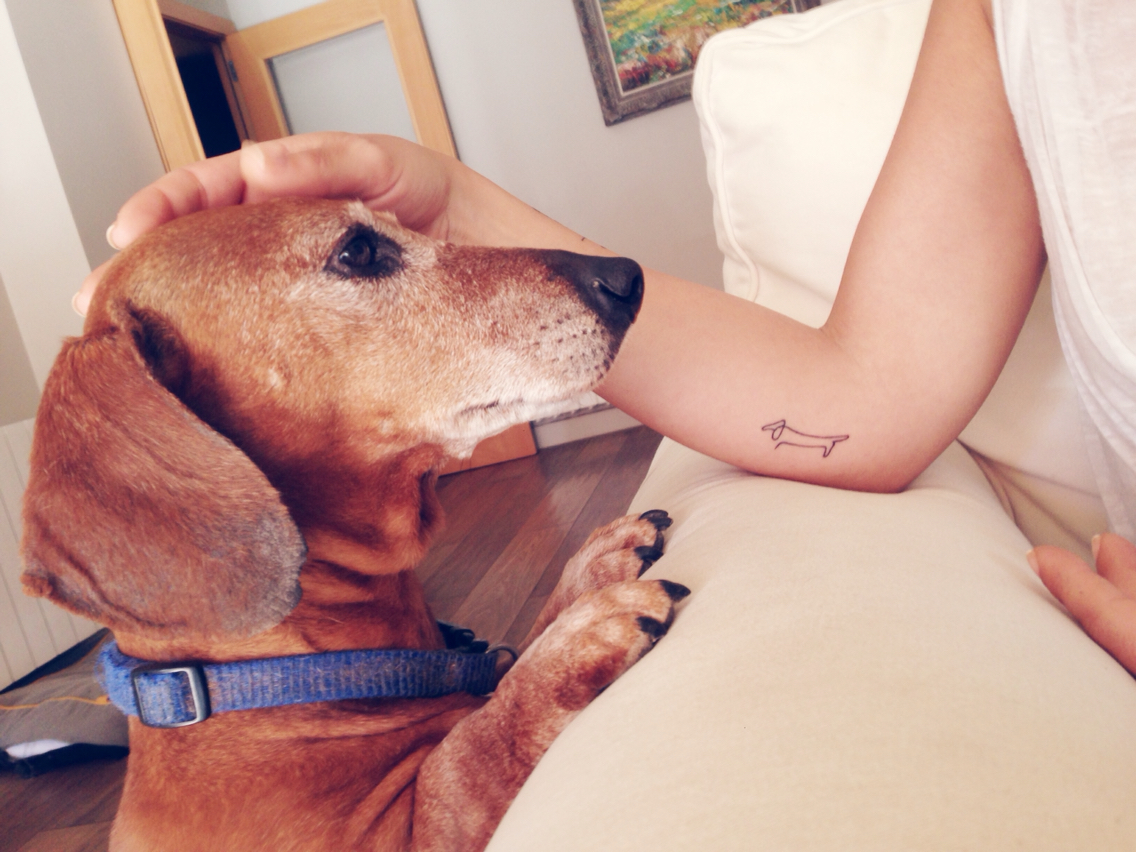 1136x852 Picasso's Dachshund Drawing Tattoo ) Doxie Dogs + Art