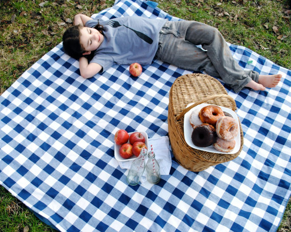 570x456 Organic Picnic Blanket Waterproof Picnic Blanket Blue