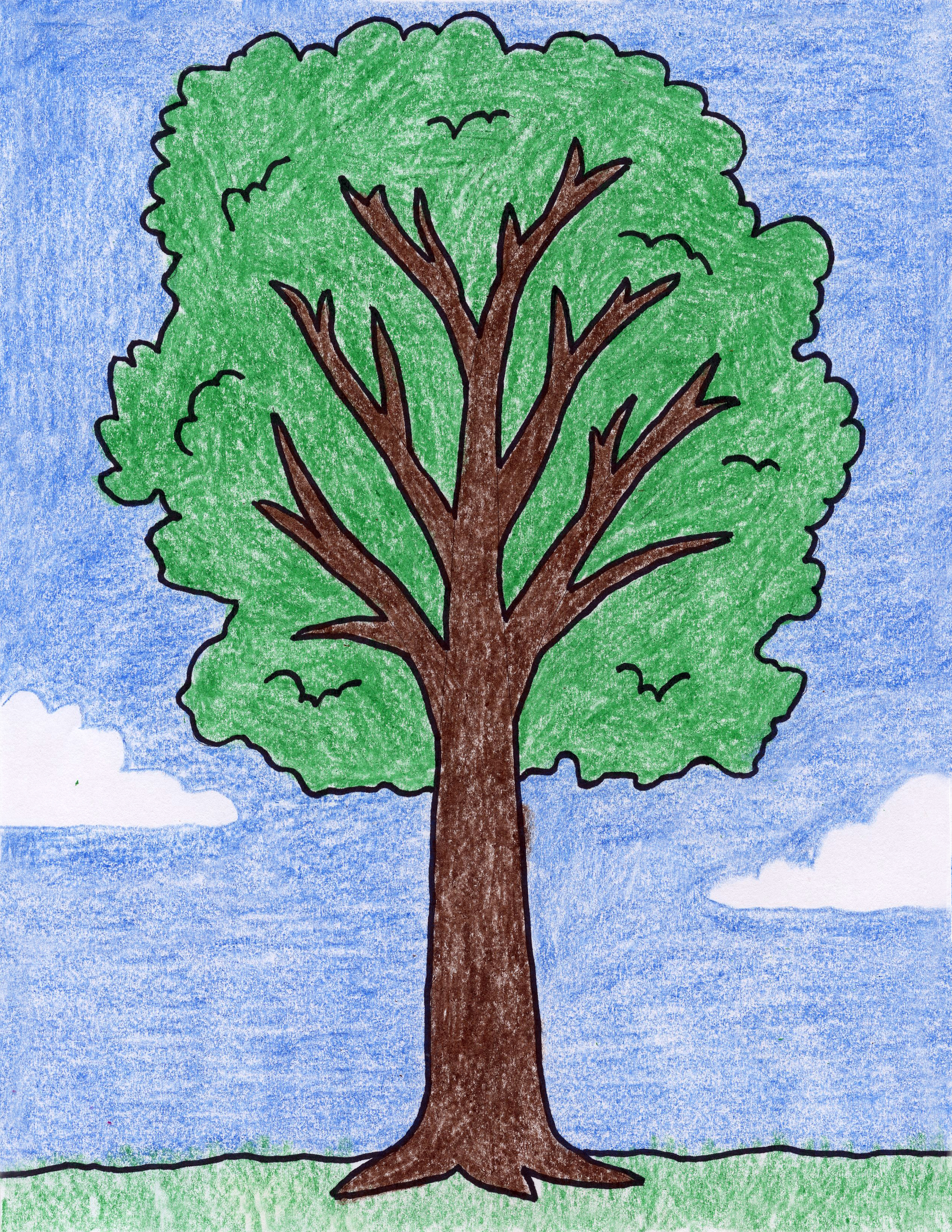 Picture Of A Tree Drawing at GetDrawings.com | Free for personal use ...