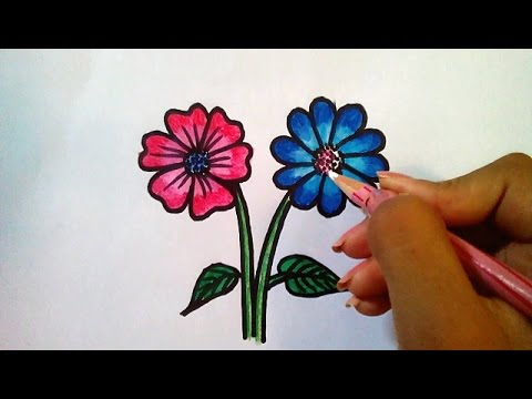 480x360 How To Draw Simple Flowers Drawing For Kids Using Staedtler