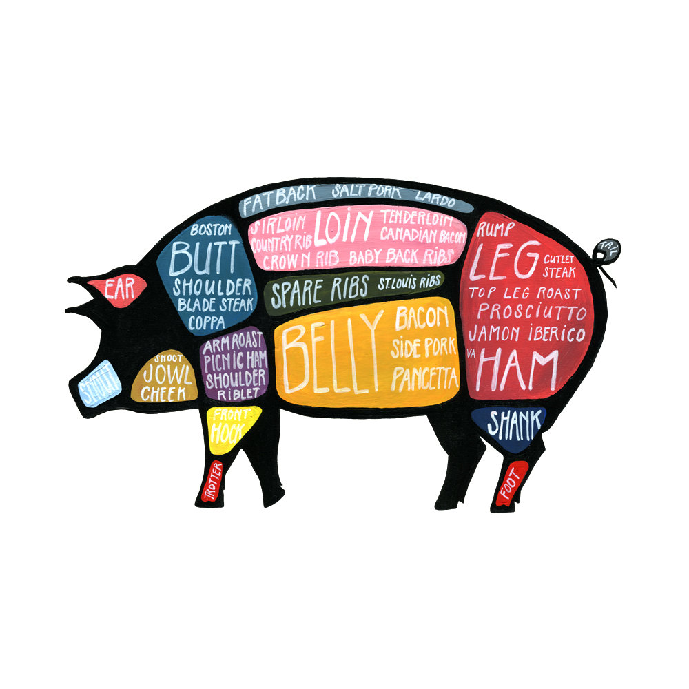 Butcher A Pig Diagram Wiring Diagrams Fuelcelldiagramwikimediacommonsgif Images Frompo Drawing At Getdrawings Com Free For Personal Use Rh Cuts