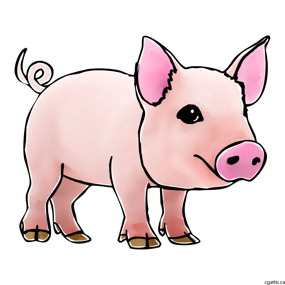 1000x1000 Pig Cartoon Drawing In 4 Steps With Photoshop