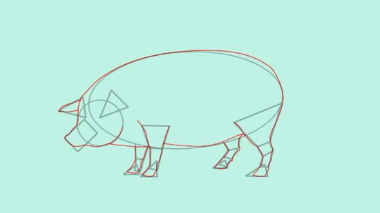 550x309 How To Draw A Pig 14 Steps (With Pictures)