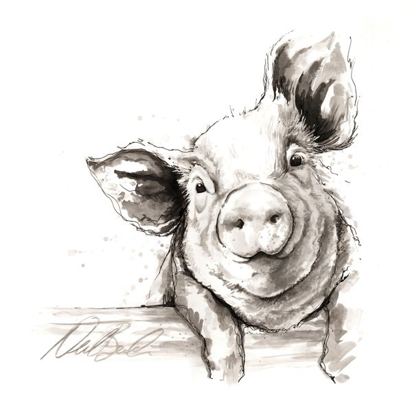 600x600 I Just Can'T Handle This Pig. I Would Have It Framed In My House