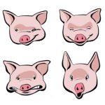 150x150 Cartoon Pig Face Free Download Clip Art Free Clip Art On Pig Face