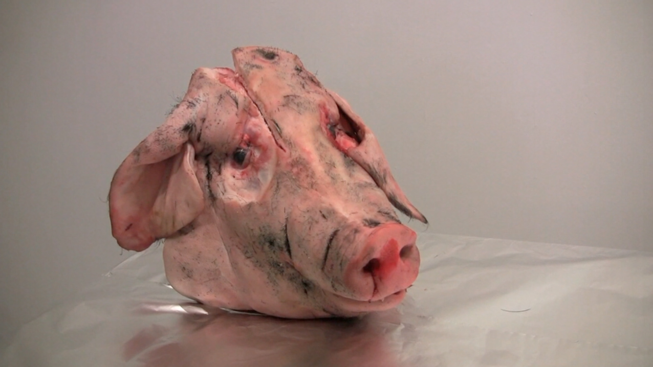 how to draw a pig using kletters