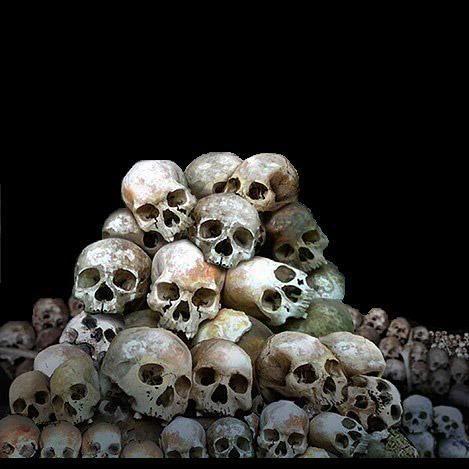 469x469 Pile Of Skulls
