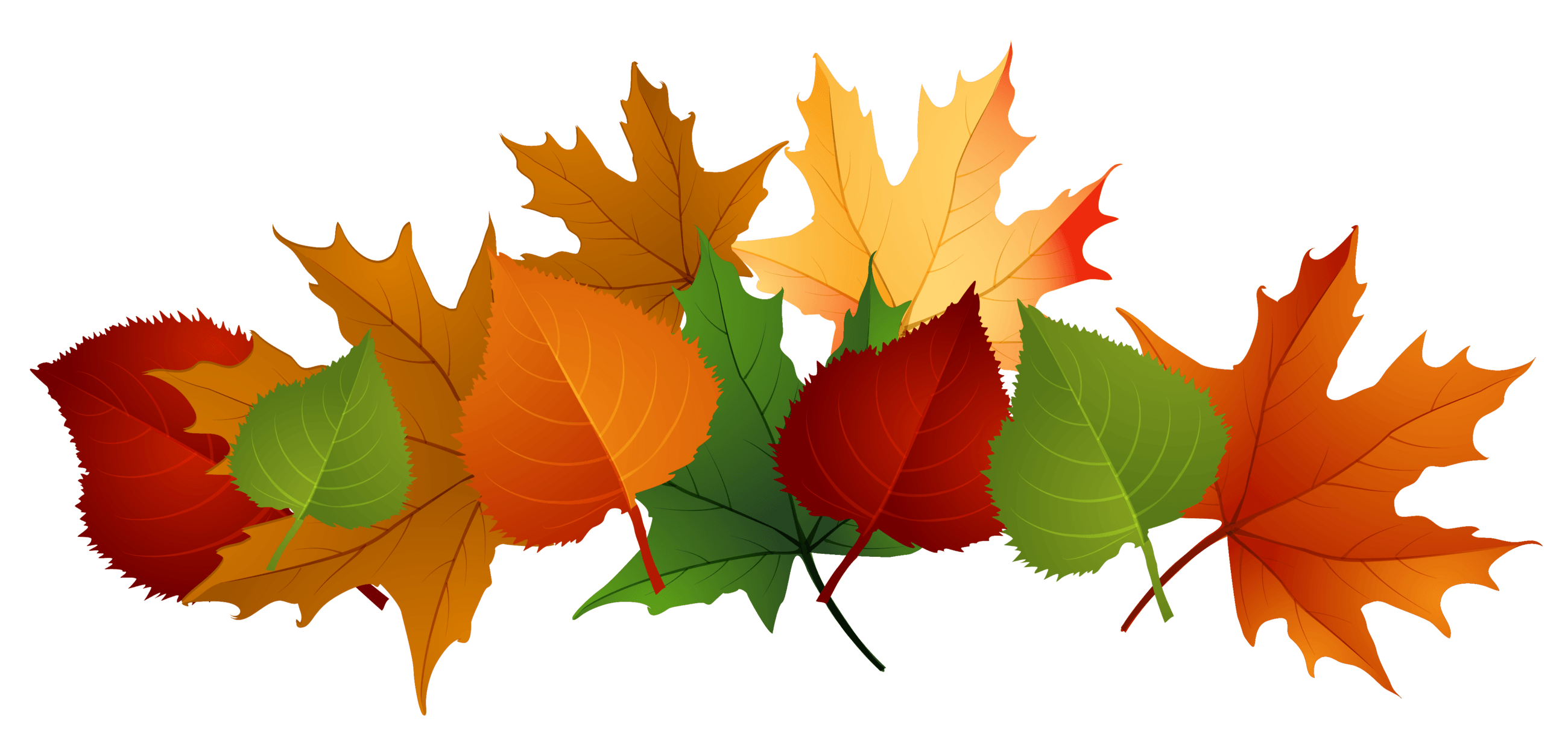 pile of leaves drawing at getdrawings com free for personal use rh getdrawings com fall leaves clip art free fall leaves clip art images