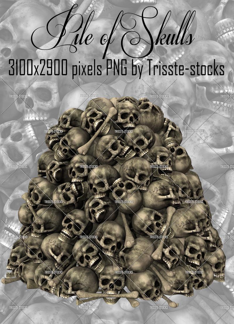 800x1104 Pile Of Skulls By Trisste Stocks