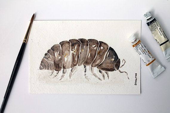 570x380 Roly Poly Pill Bug Original Watercolors Painting, Insect