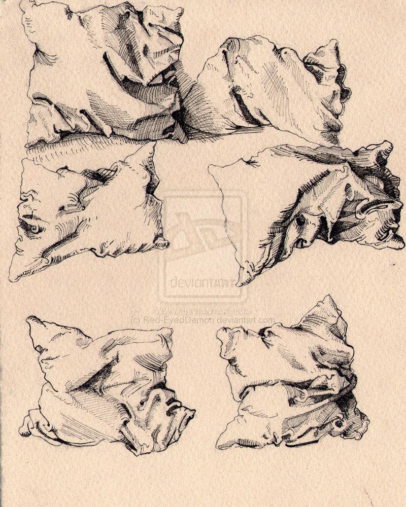 800x1000 Pillow Study, Albrecht Durer Print Amp Pattern