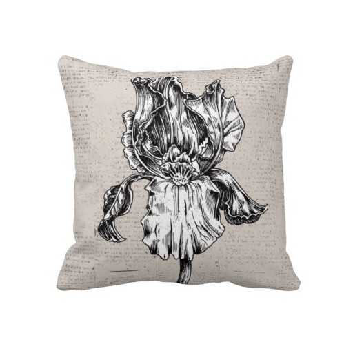 512x512 Vintage Iris Drawing Pillows Black And White Iris