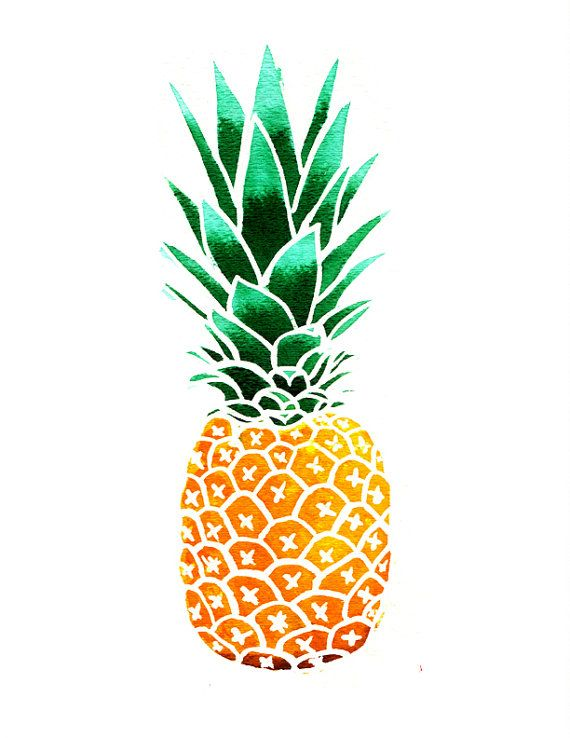 570x738 182 Best Pineapples Illustrations Images On Background