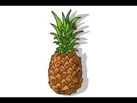 480x360 How To Draw A Pineapple