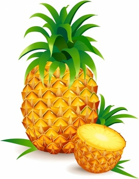 285x368 Pineapple Drawing Free Vector Download (89,739 Free Vector)