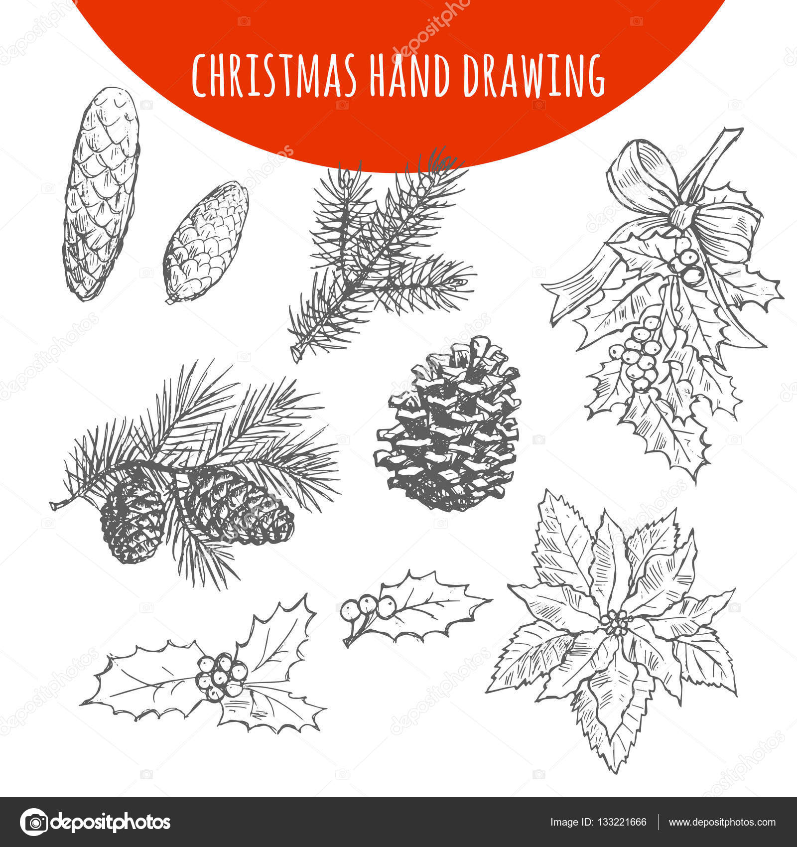 1600x1700 Christmas Pine, Fir Tree Branches And Cones Vector Sketch Stock