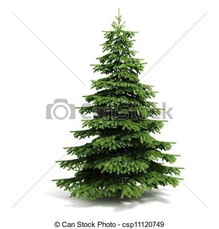 450x470 Drawn Pine Tree Chrismas Tree
