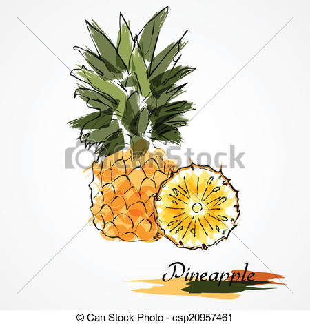 450x470 Pineapple Fruit Slice. Hand Drawn Pineapple Ripe Fruit Slice