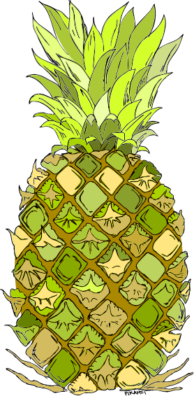 pineapples drawing at getdrawings com free for personal use
