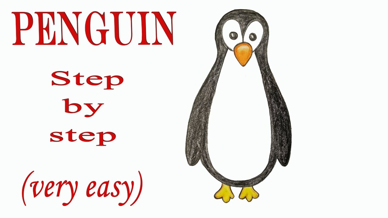 1280x720 How To Draw A Penguin Step By Step (Very Easy)