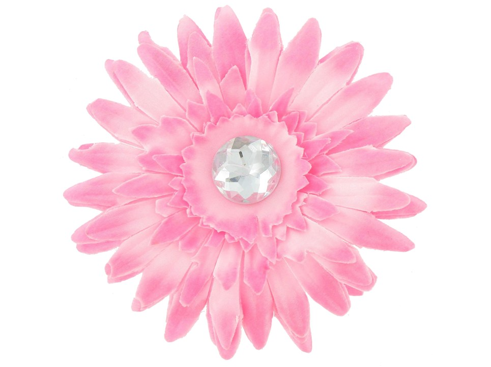 965x722 Pink Gerber Daisy Clipart