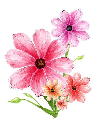392x486 Hand Drawn Flower Pink Psd Graphic Flowers Hand