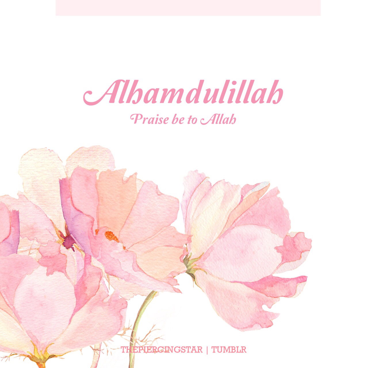 1280x1280 Pin By Muslim Notepad On Islam