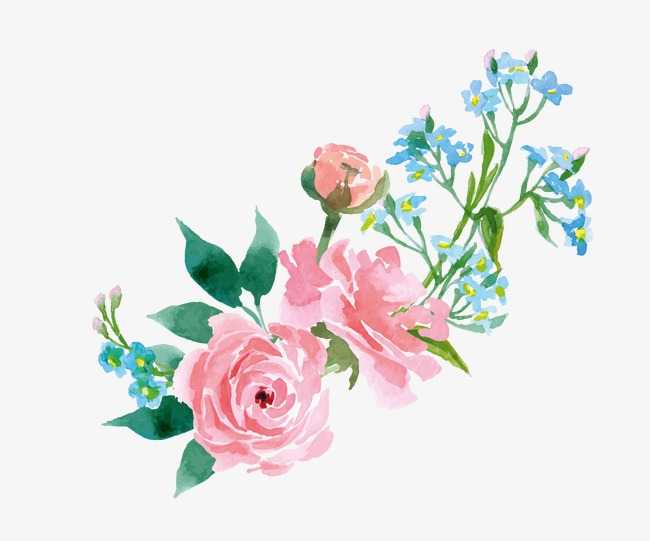 650x541 Watercolor Flowers, Drawing Plant, Flowers, Pink Flowers Png Image
