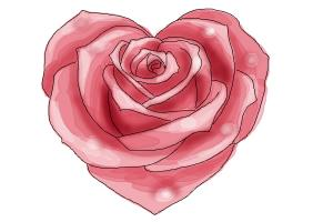 300x200 How To Draw A Heart Rose