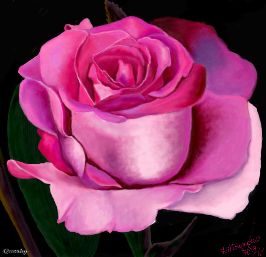 886x856 Pink Rose A Plants Speedpaint Drawing By Kutedymples In Group