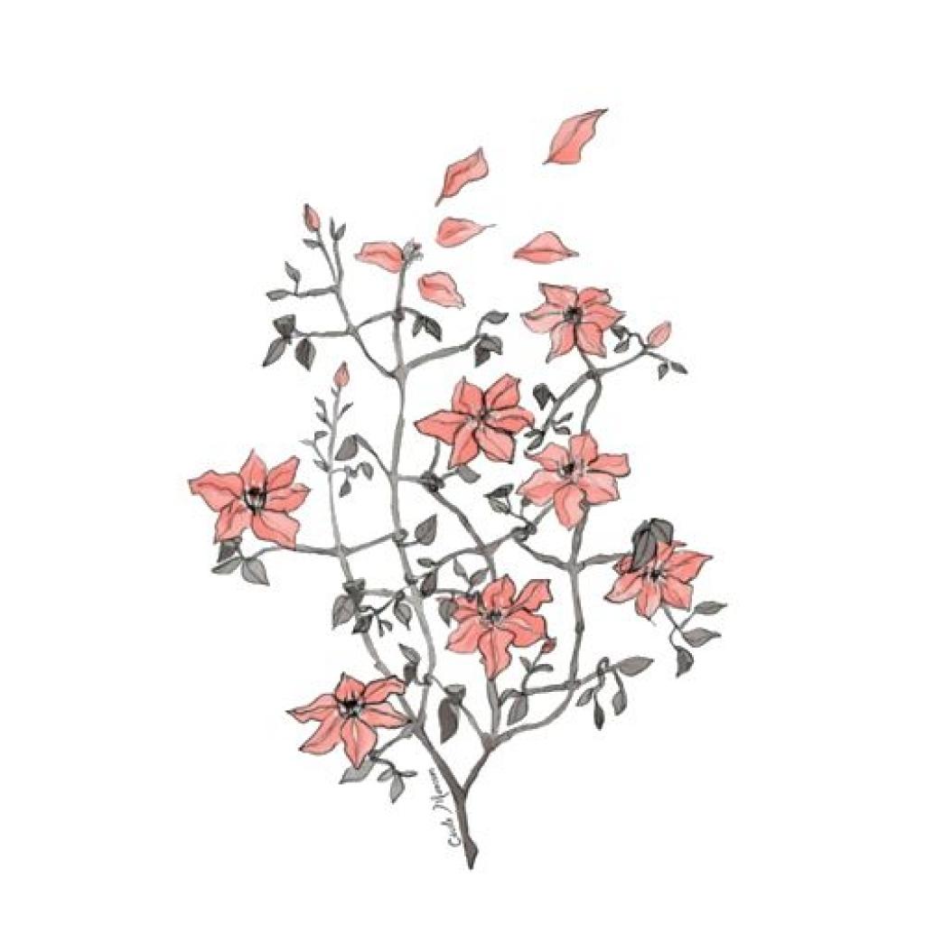1024x1024 Flower Drawings