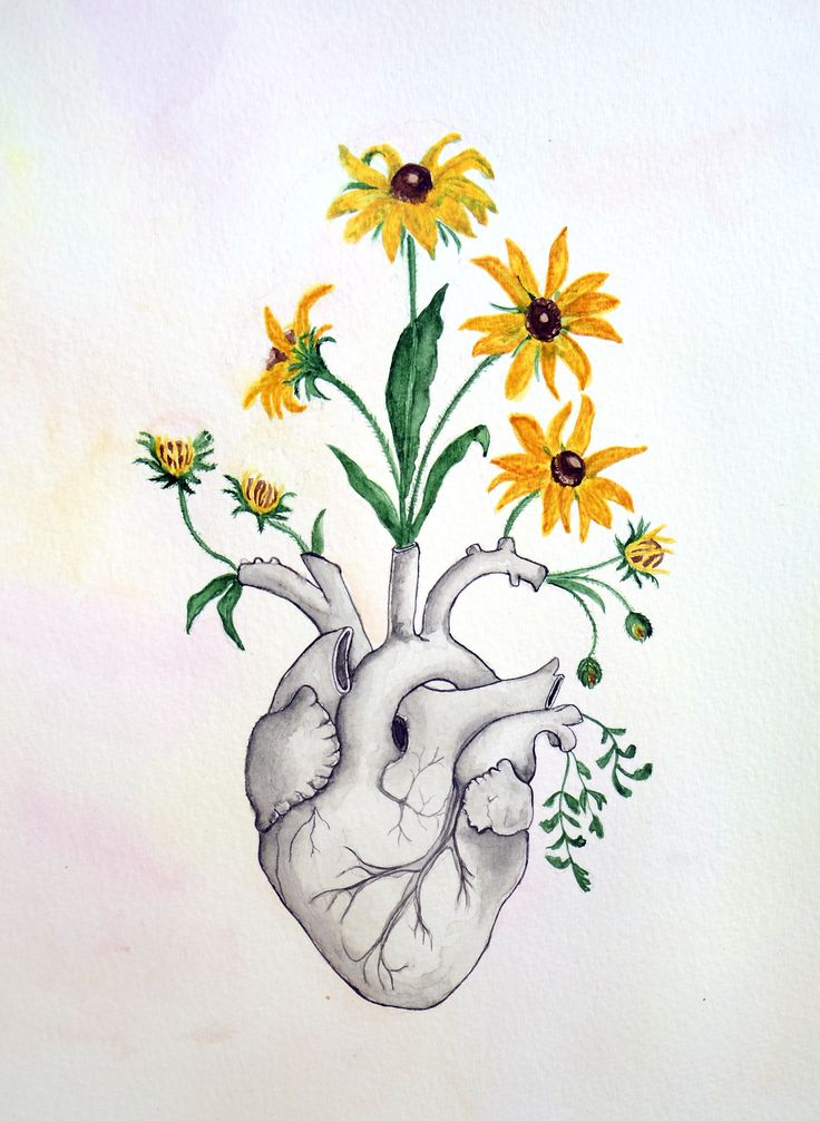 736x1006 Heart And Flowers Drawings