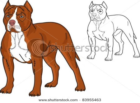 450x333 Pitbull Dog Cartoon Drawing