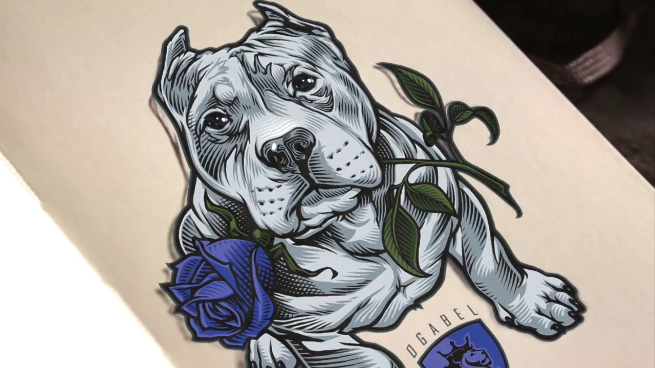 1280x720 Pitbull And Rose Drawing By Ogabel