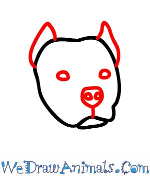 300x350 How To Draw A Pitbull Dog