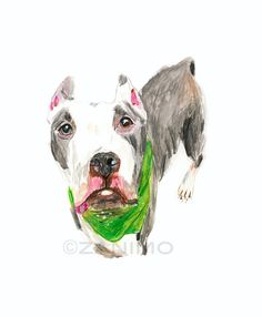 236x286 Black White Pitbull Original Drawing Of A Dog Fine Art By Zanimo
