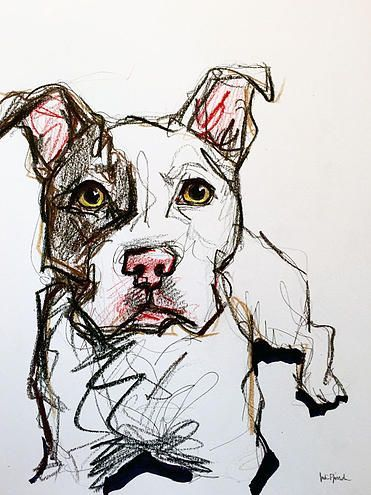 371x495 Pitbull Sketch Marker, Pen, Pencil, Colored Pencil And Highlighter